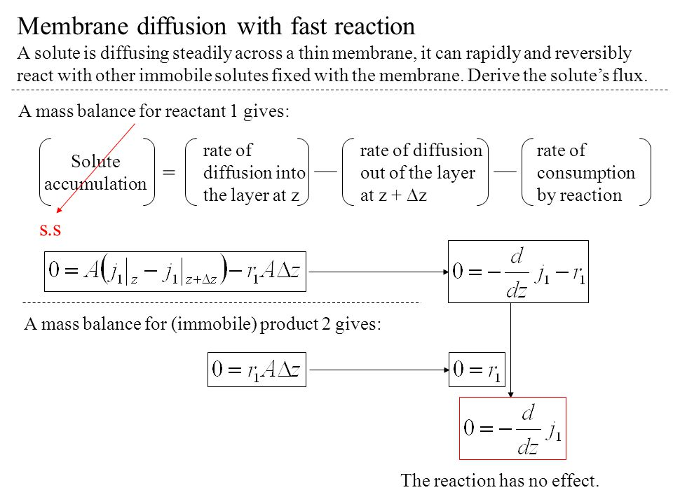 Membrane diffusion with fast reaction