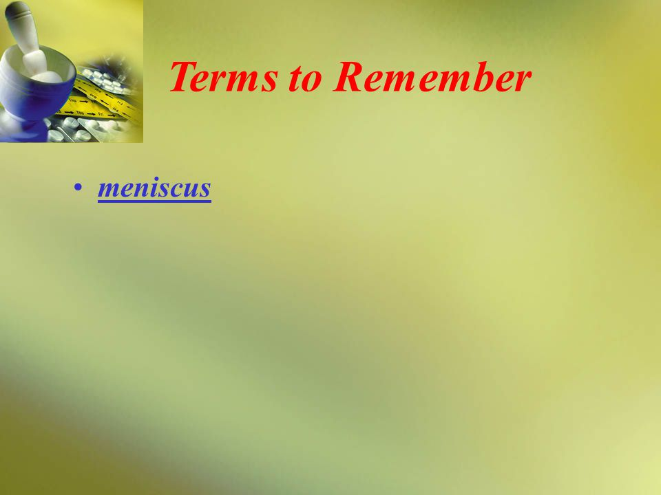 Terms to Remember meniscus