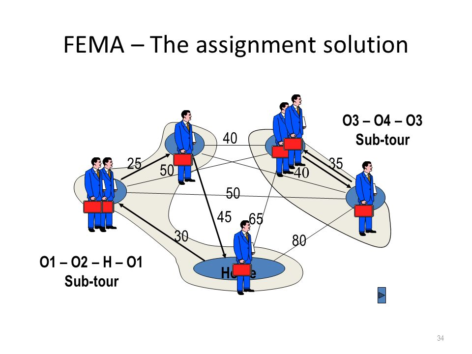 FEMA – The assignment solution
