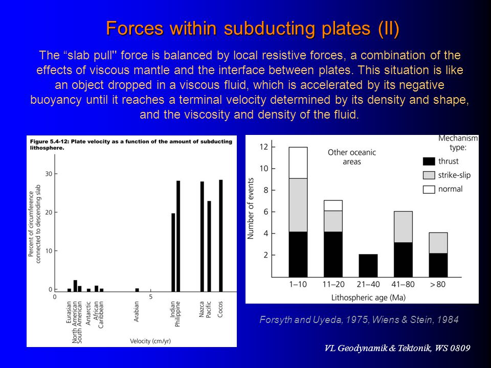 Forces within subducting plates (II)