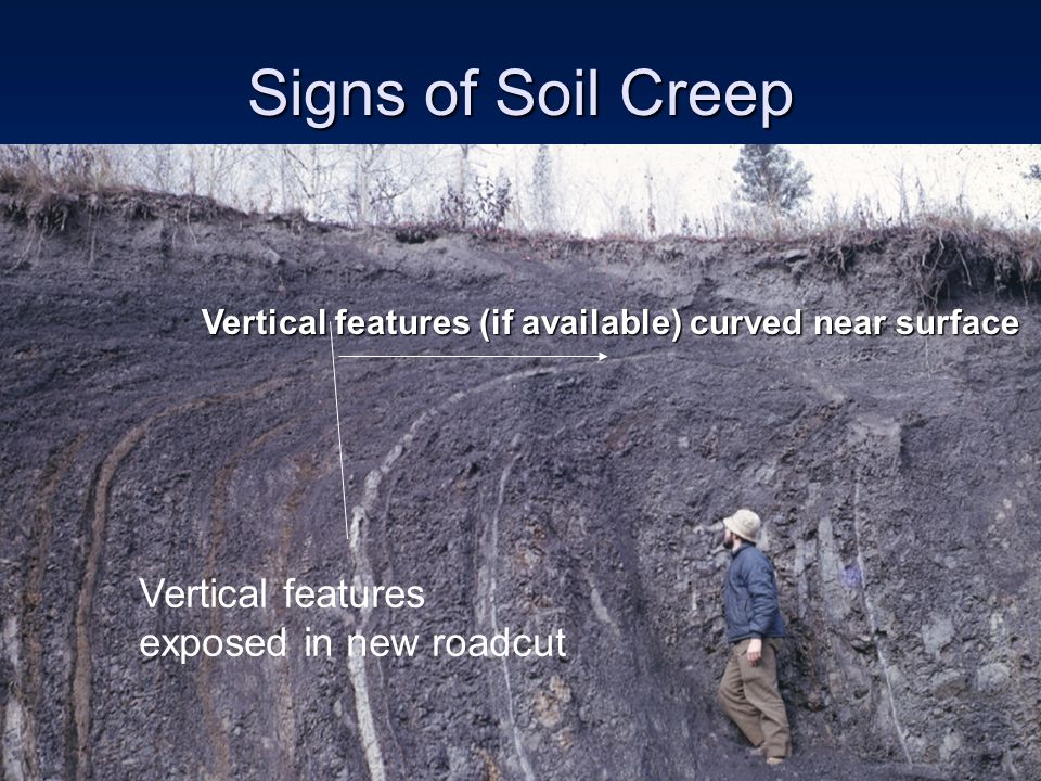 Signs of Soil Creep Vertical features exposed in new roadcut