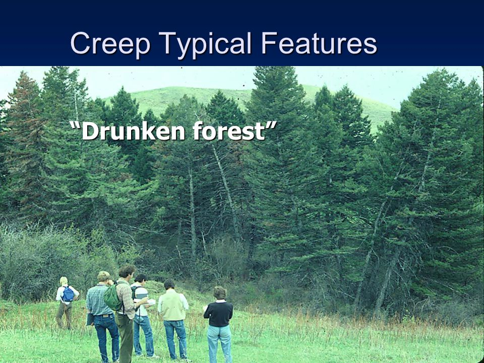 Creep Typical Features