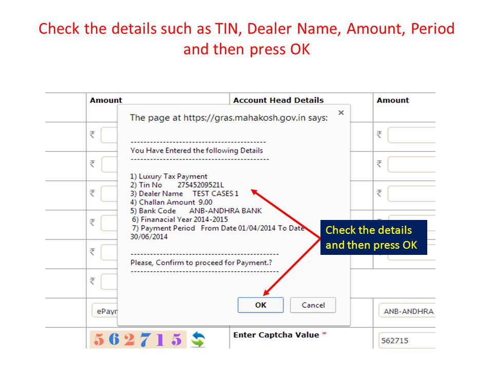 Check the details such as TIN, Dealer Name, Amount, Period and then press OK