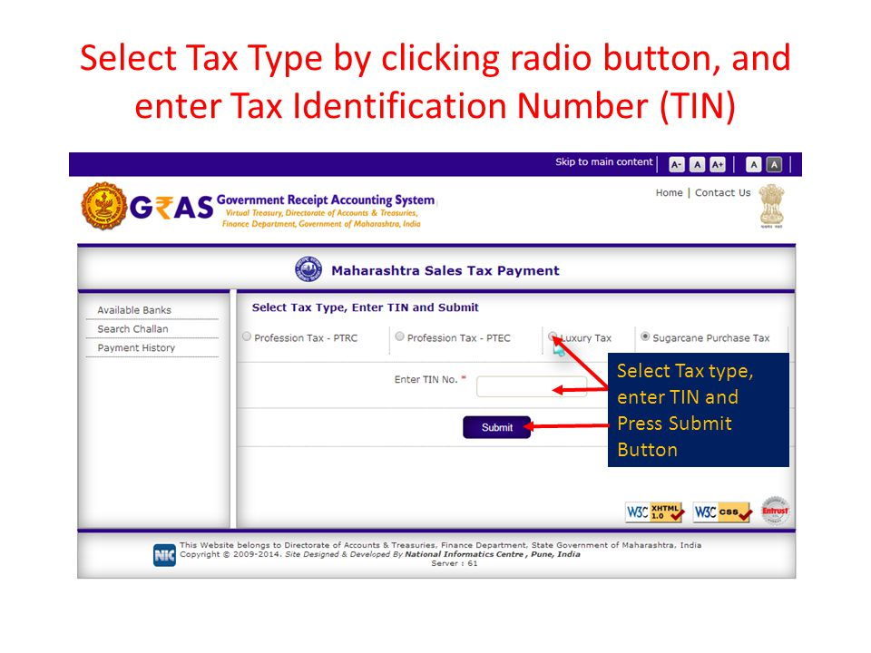 Select Tax Type by clicking radio button, and enter Tax Identification Number (TIN)