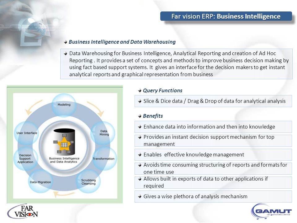 Far vision ERP: Business Intelligence