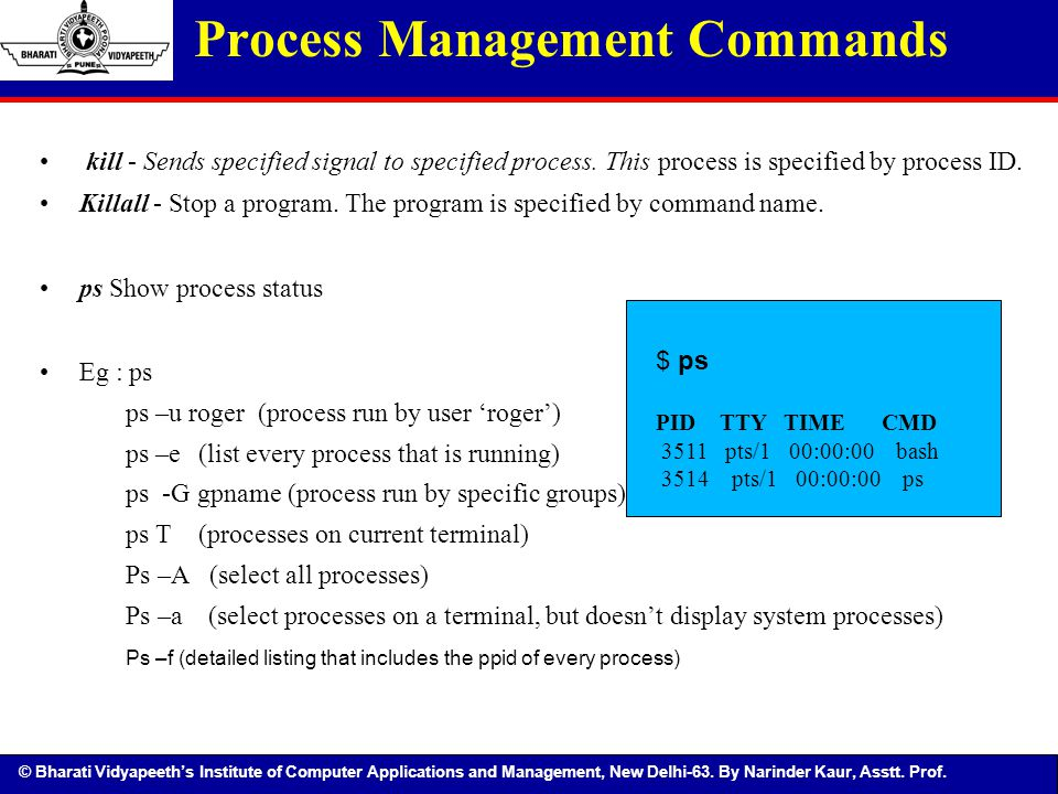Process Management Commands