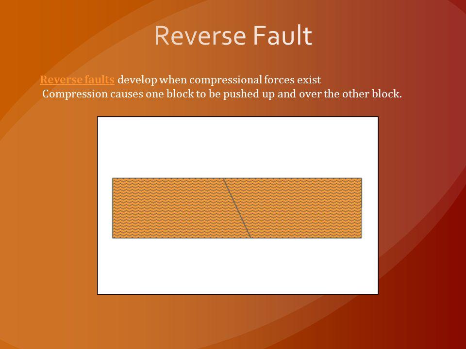 Reverse Fault Reverse faults develop when compressional forces exist