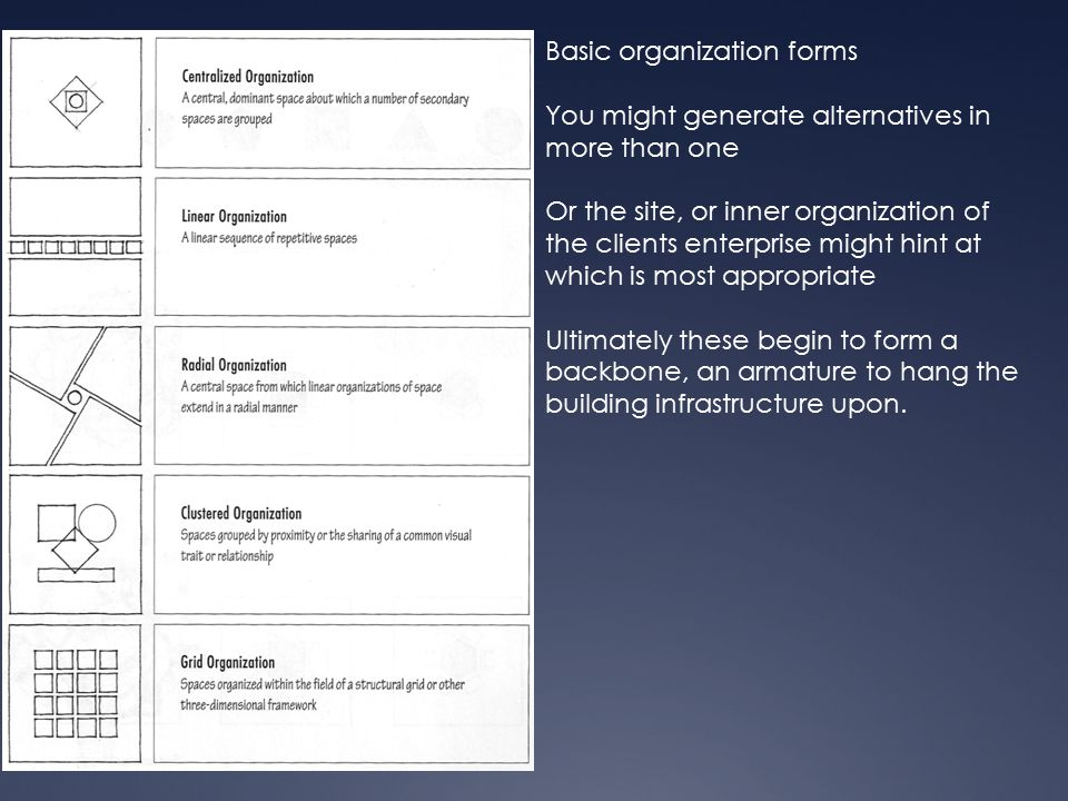 Basic organization forms