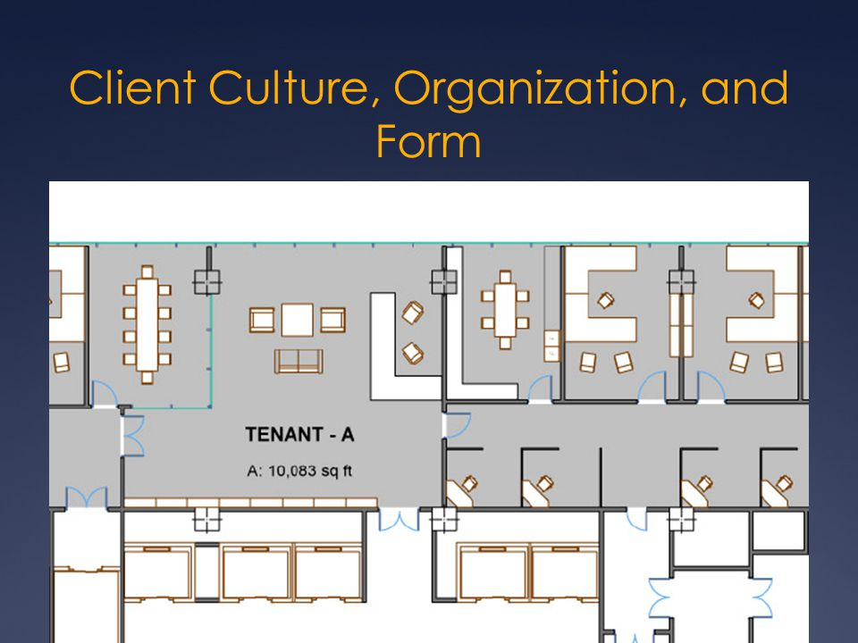 Client Culture, Organization, and Form