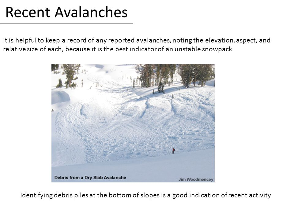 Recent Avalanches