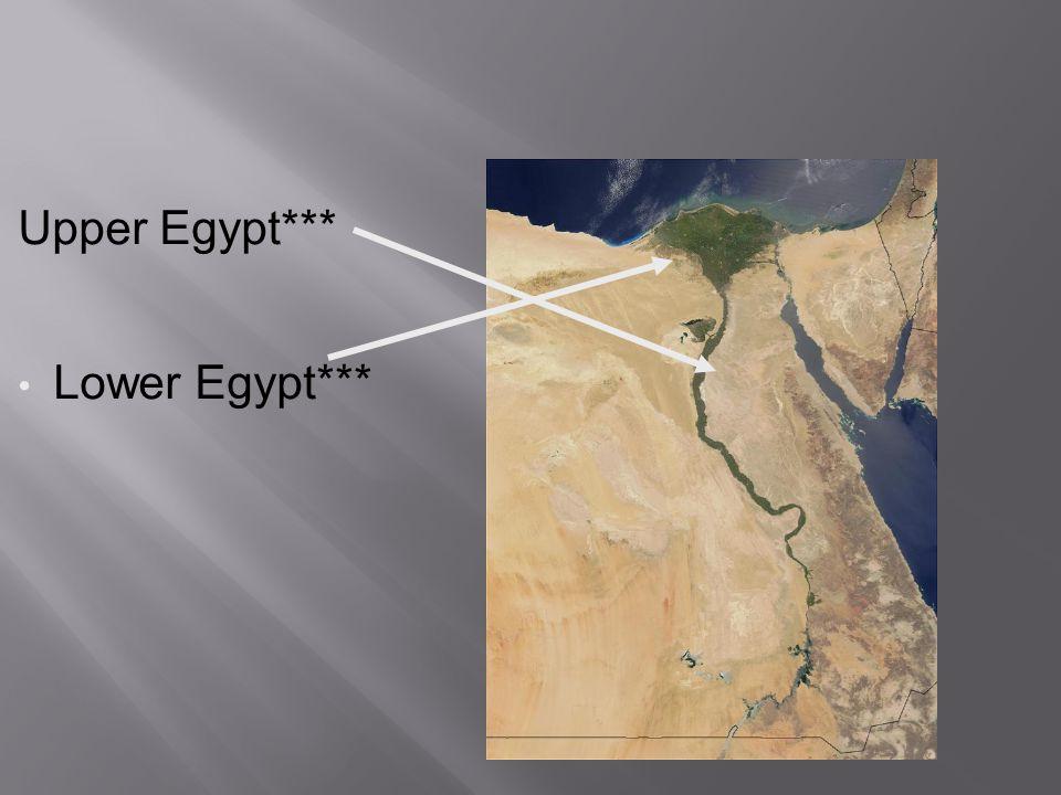 Upper Egypt*** Lower Egypt***