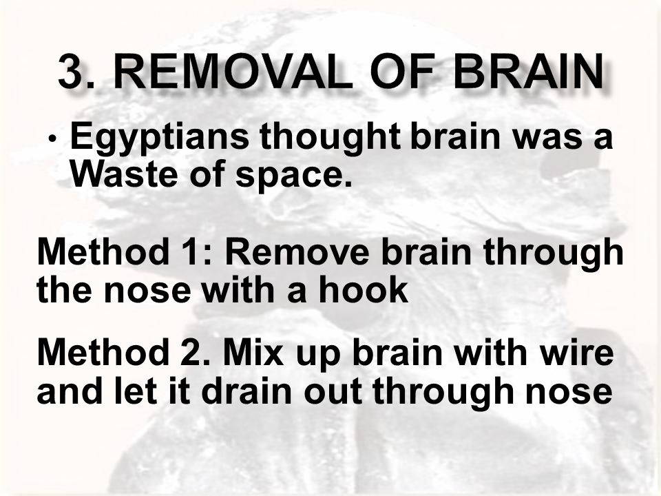 3. Removal of Brain Egyptians thought brain was a Waste of space.