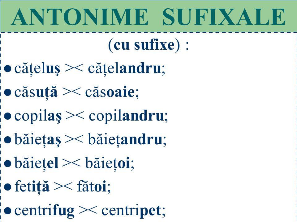 ANTONIME SUFIXALE (cu sufixe) : căţeluş >< căţelandru;