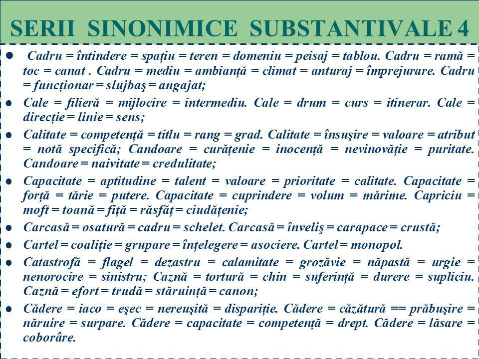 SERII SINONIMICE SUBSTANTIVALE 4