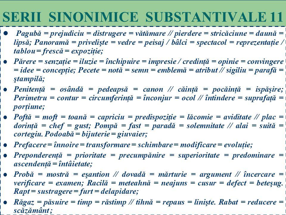 SERII SINONIMICE SUBSTANTIVALE 11