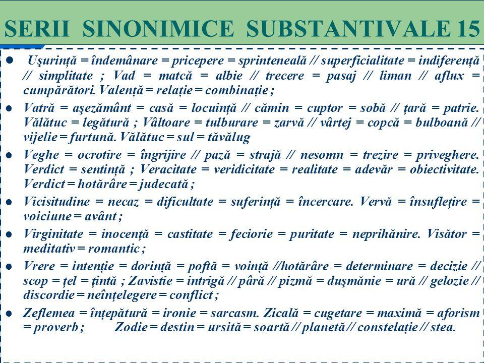 SERII SINONIMICE SUBSTANTIVALE 15