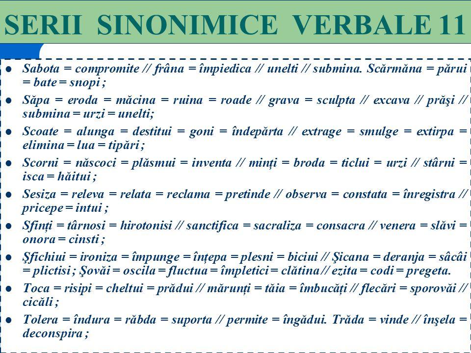 SERII SINONIMICE VERBALE 11