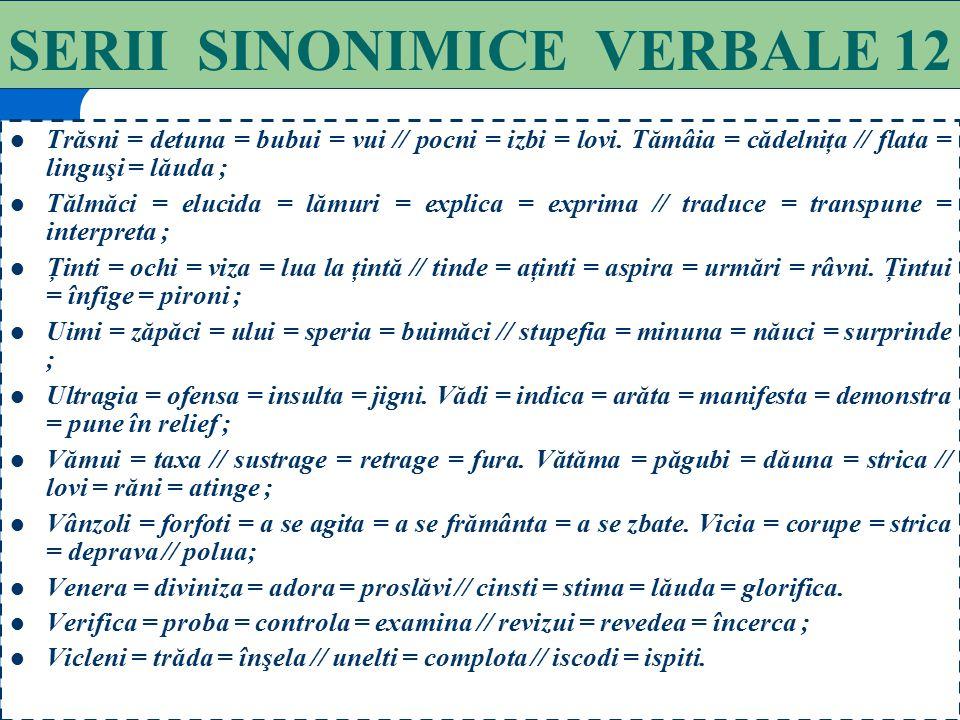 SERII SINONIMICE VERBALE 12