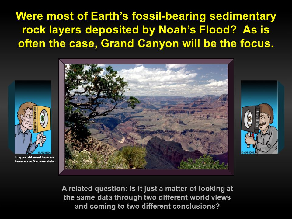 Were most of Earth's fossil-bearing sedimentary rock layers deposited by Noah's Flood As is often the case, Grand Canyon will be the focus.