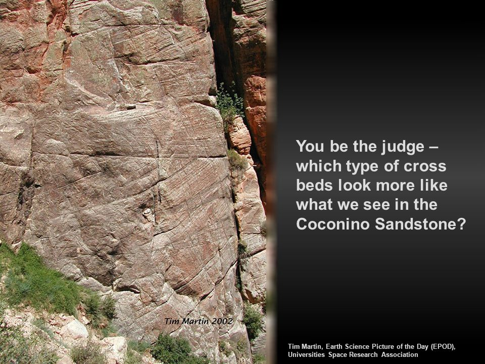 You be the judge – which type of cross beds look more like what we see in the Coconino Sandstone