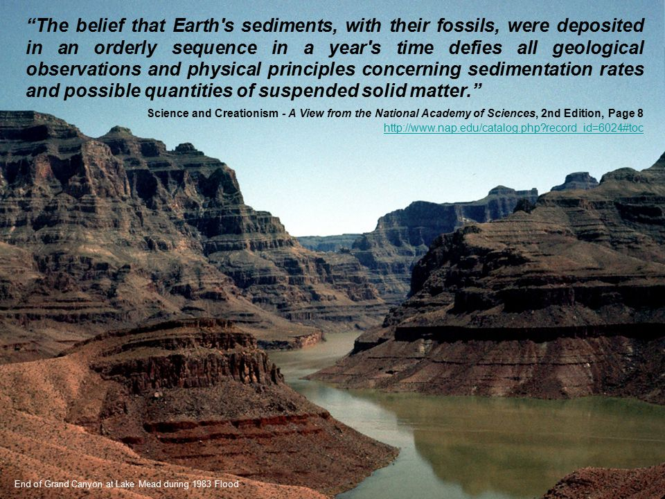 The belief that Earth s sediments, with their fossils, were deposited in an orderly sequence in a year s time defies all geological observations and physical principles concerning sedimentation rates and possible quantities of suspended solid matter.