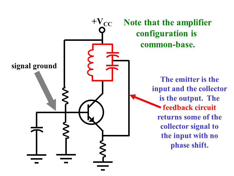 Note that the amplifier input and the collector