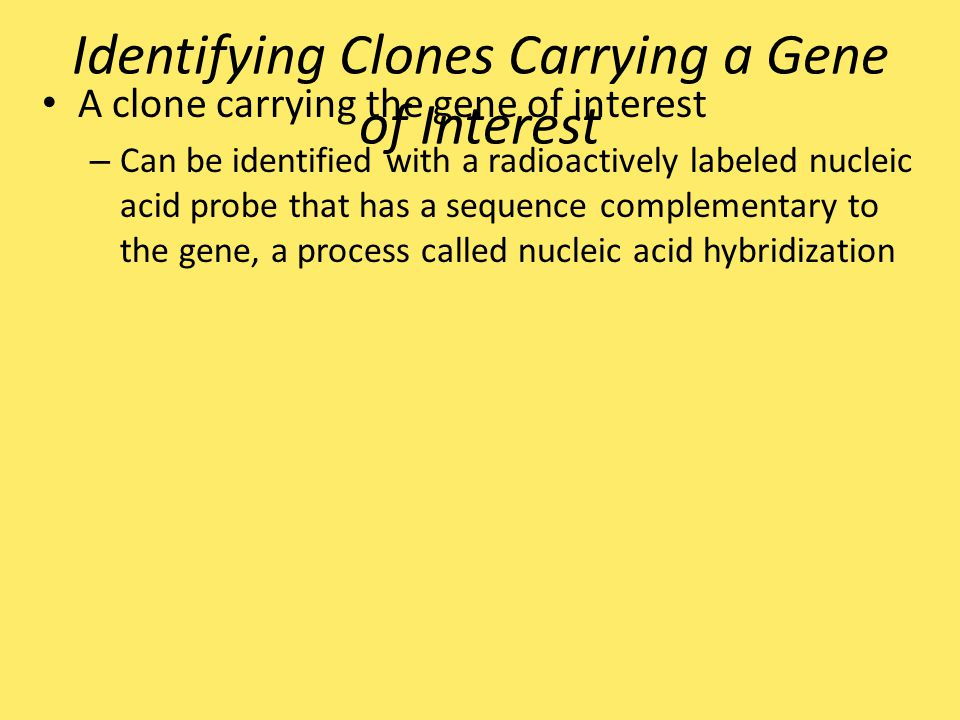 Identifying Clones Carrying a Gene of Interest