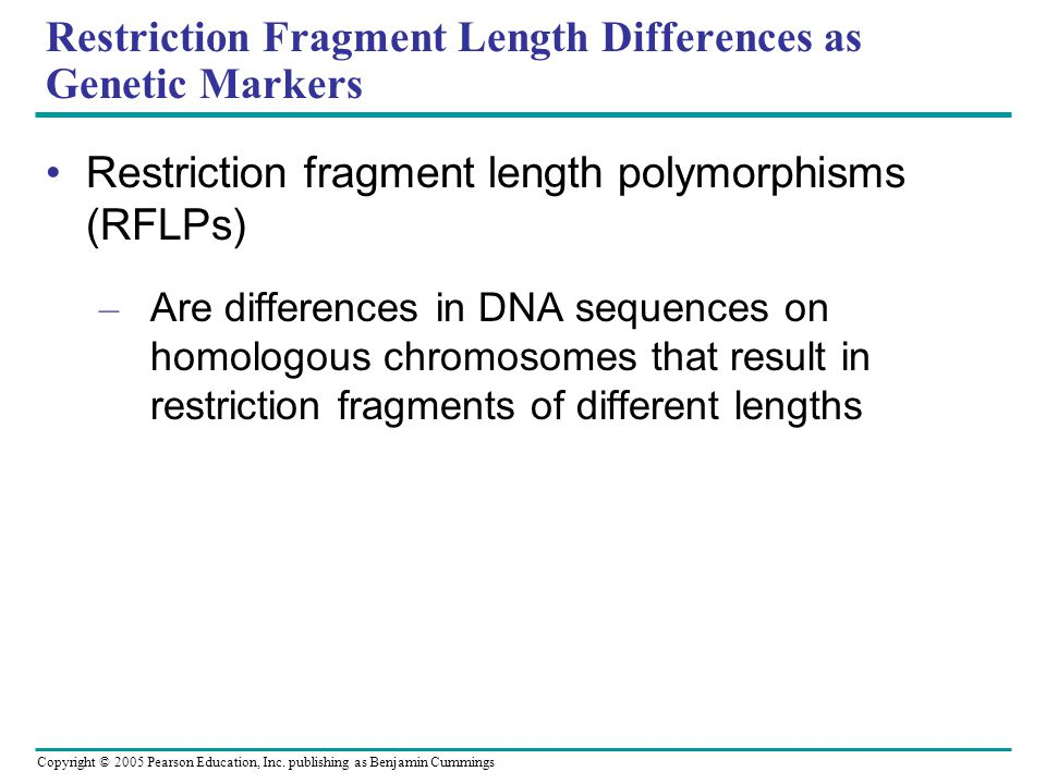 Restriction Fragment Length Differences as Genetic Markers
