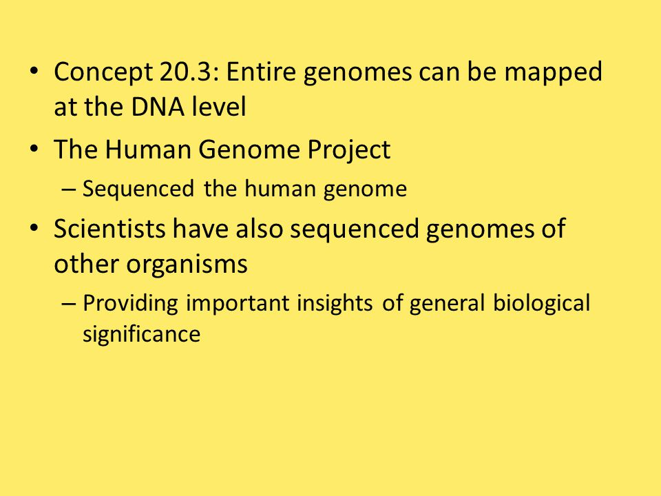 Concept 20.3: Entire genomes can be mapped at the DNA level
