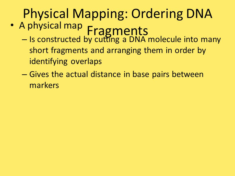 Physical Mapping: Ordering DNA Fragments
