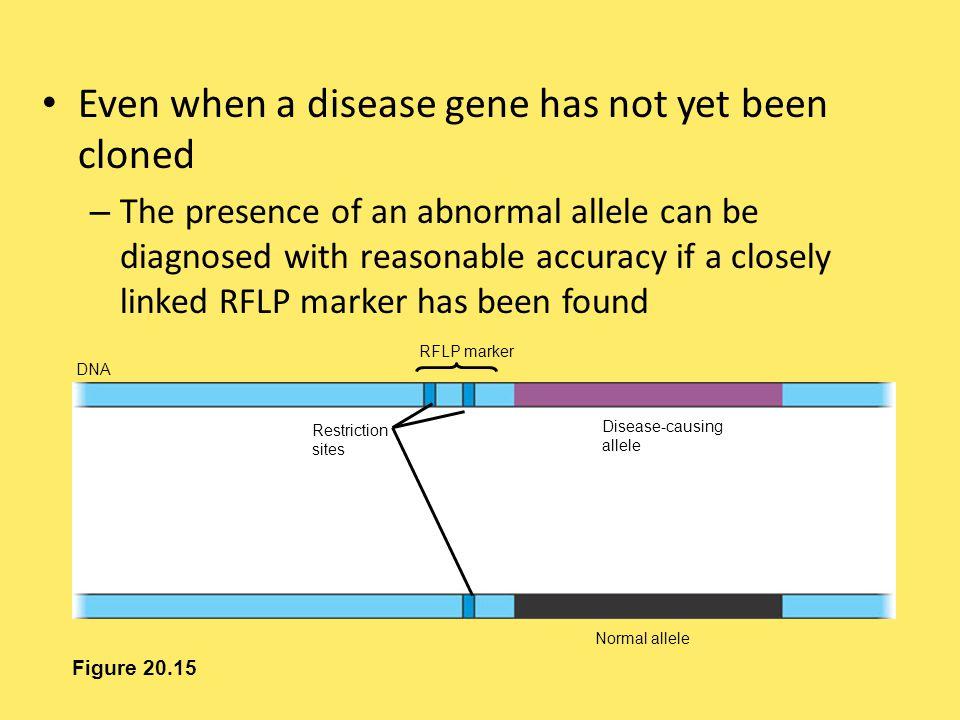 Even when a disease gene has not yet been cloned
