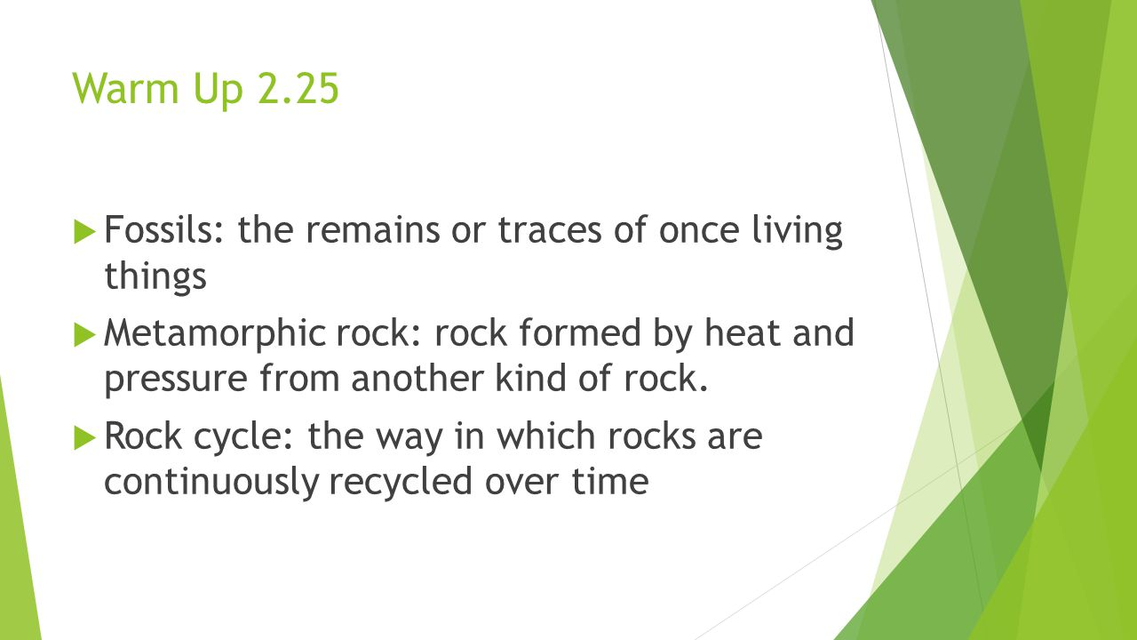 Warm Up 2.25 Fossils: the remains or traces of once living things