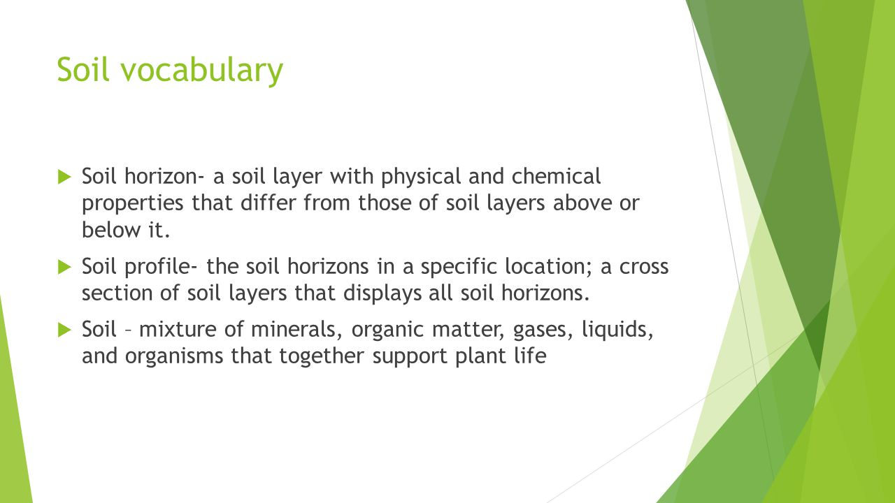 Soil vocabulary Soil horizon- a soil layer with physical and chemical properties that differ from those of soil layers above or below it.