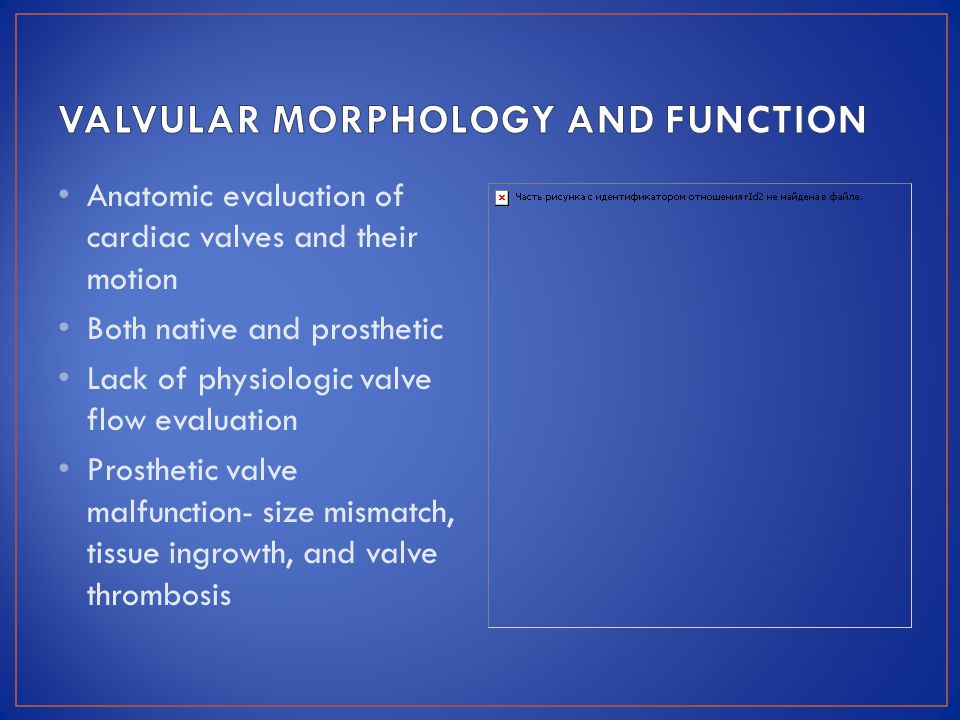VALVULAR MORPHOLOGY AND FUNCTION