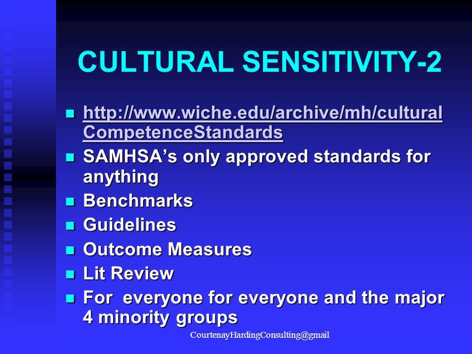 CULTURAL SENSITIVITY-2