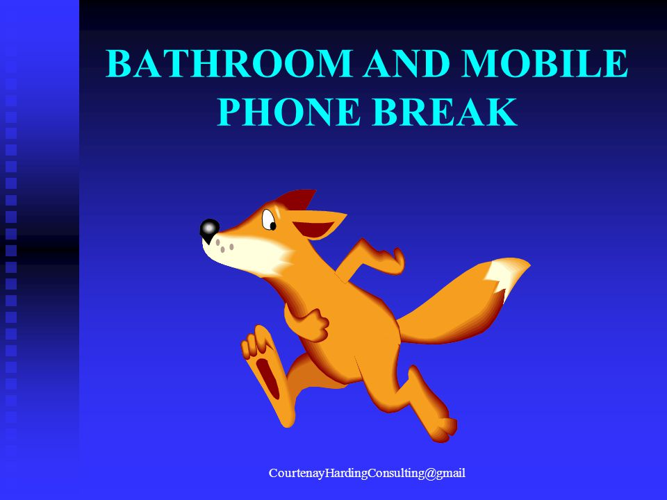 BATHROOM AND MOBILE PHONE BREAK