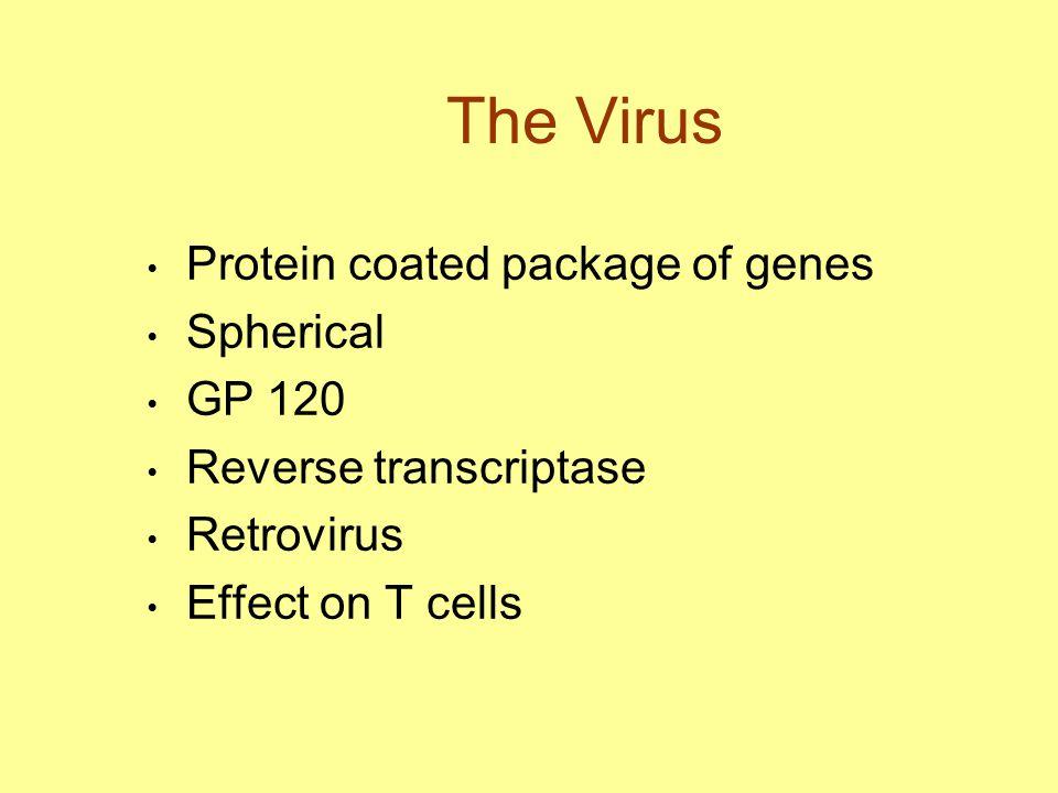 The Virus Protein coated package of genes Spherical GP 120