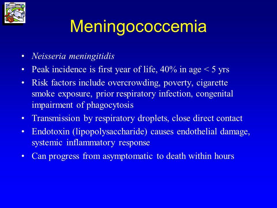 Meningococcemia Neisseria meningitidis