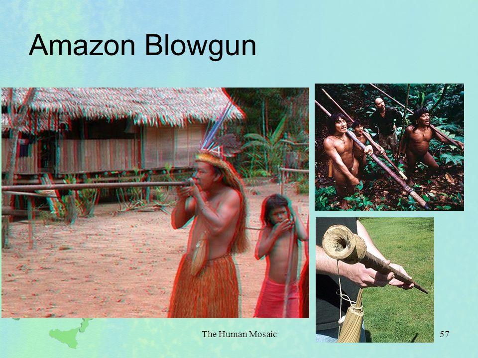Amazon Blowgun The Human Mosaic