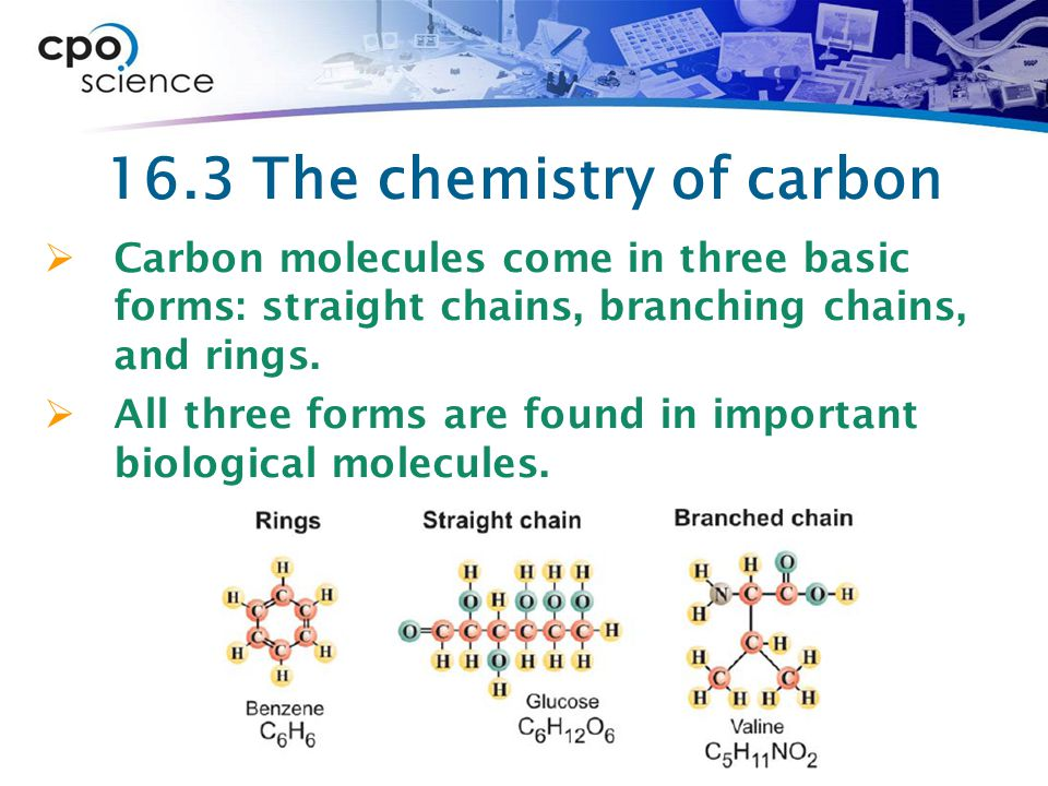 16.3 The chemistry of carbon