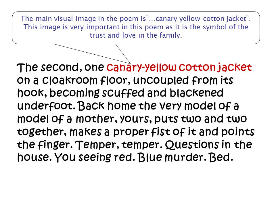 The main visual image in the poem is …canary-yellow cotton jacket
