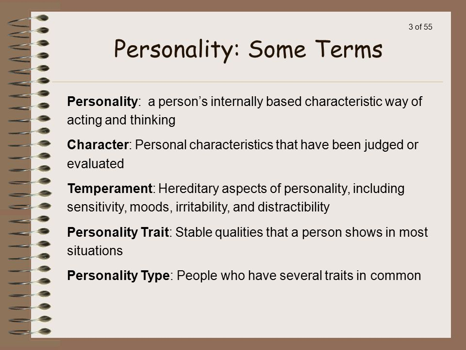 Personality: Some Terms