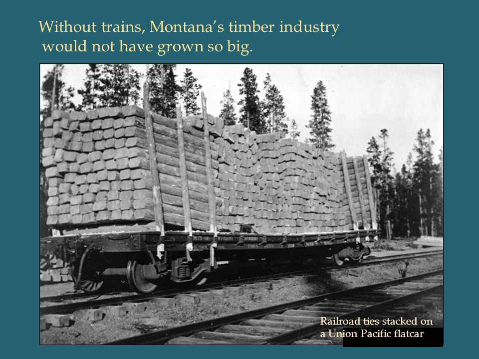 Without trains, Montana's timber industry would not have grown so big.