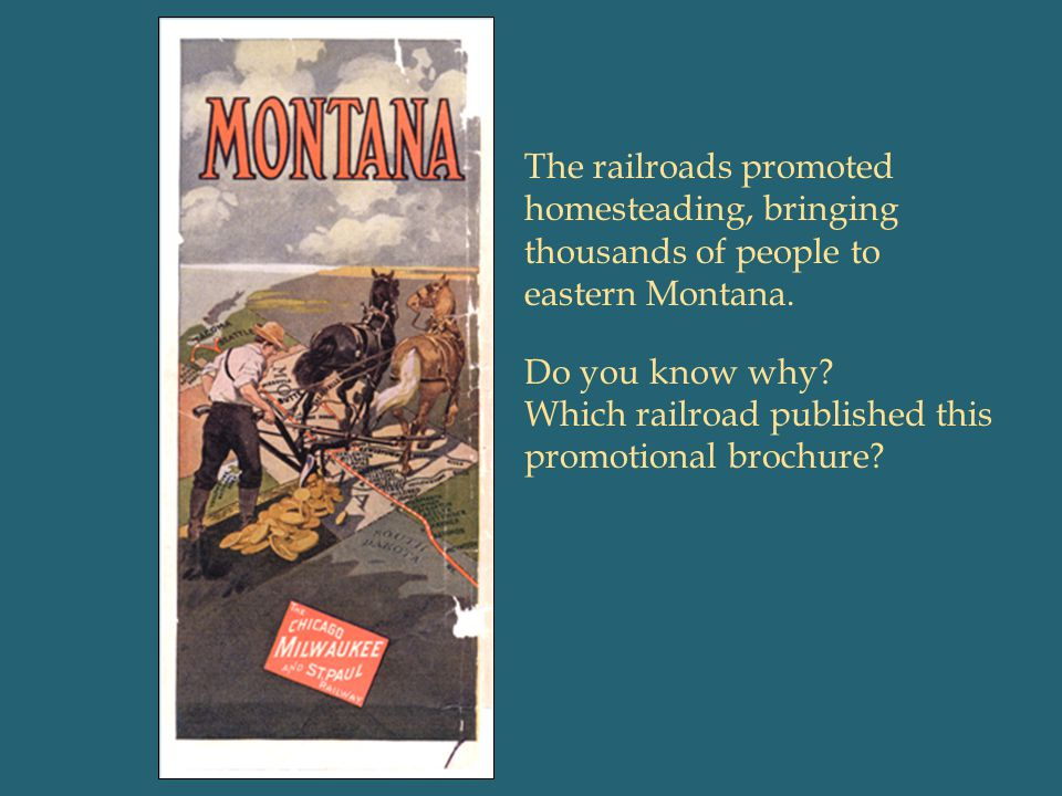 The railroads promoted homesteading, bringing thousands of people to