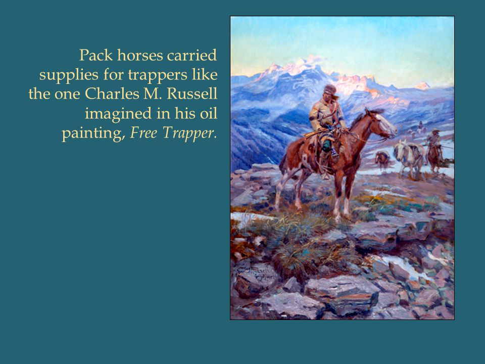Pack horses carried supplies for trappers like the one Charles M