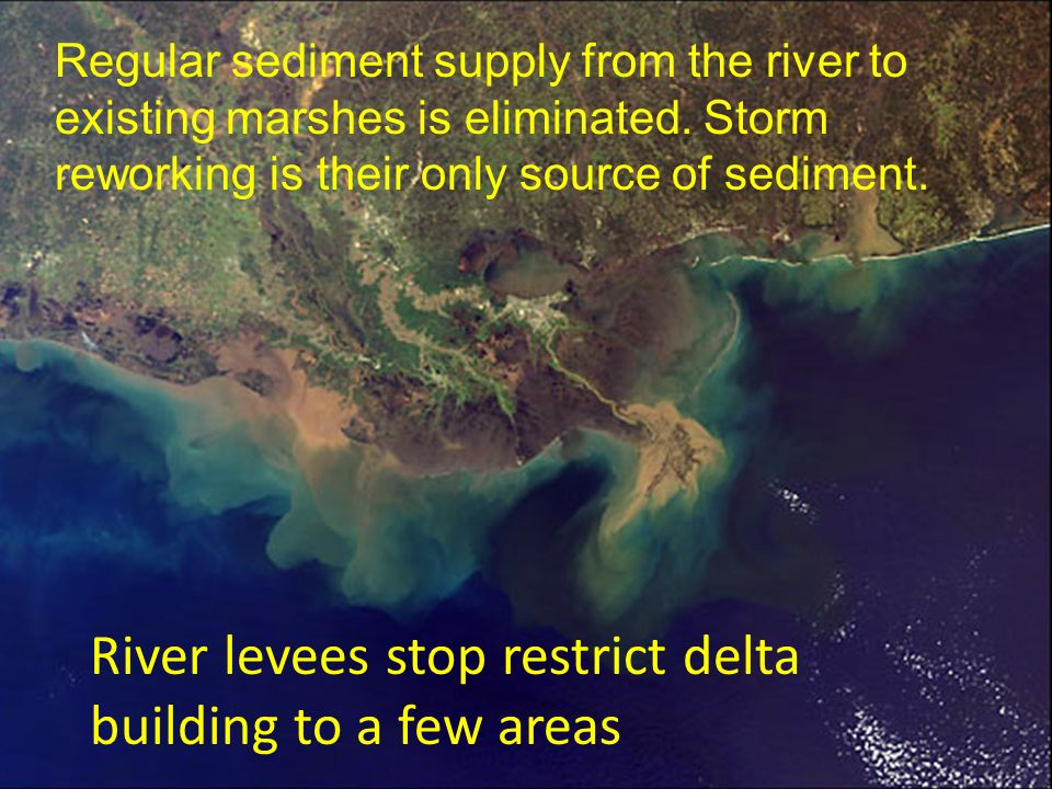 River levees stop restrict delta building to a few areas