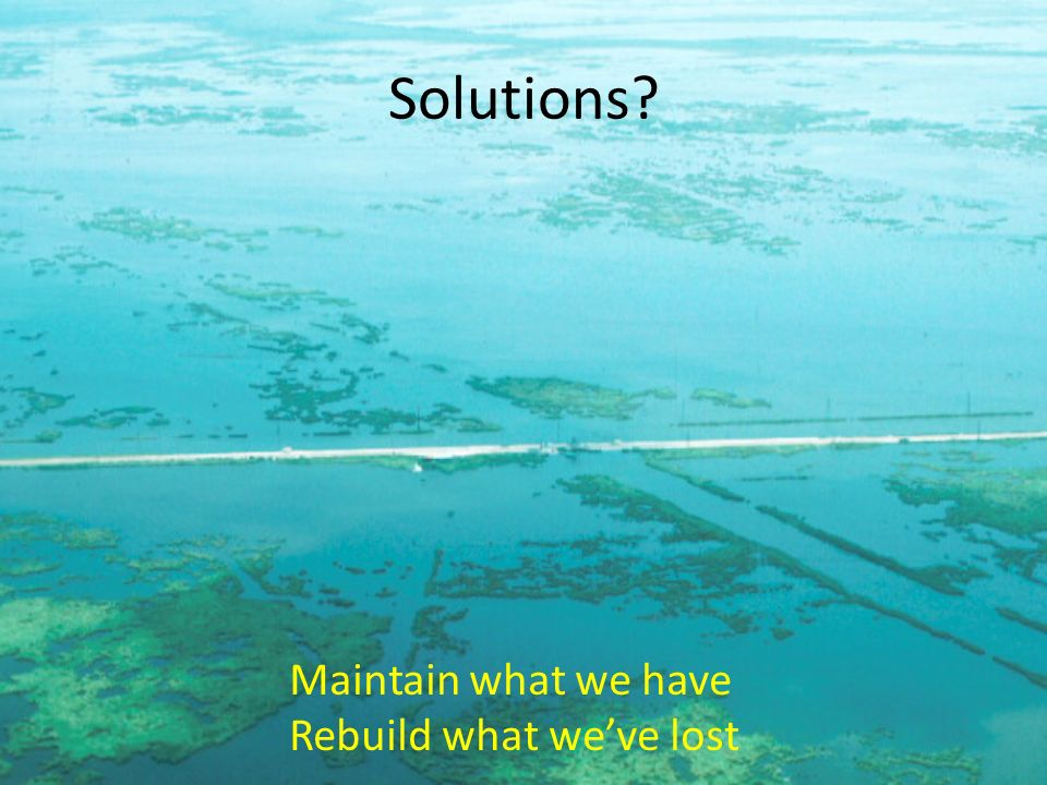 Solutions Maintain what we have Rebuild what we've lost