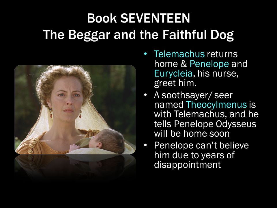 Book SEVENTEEN The Beggar and the Faithful Dog