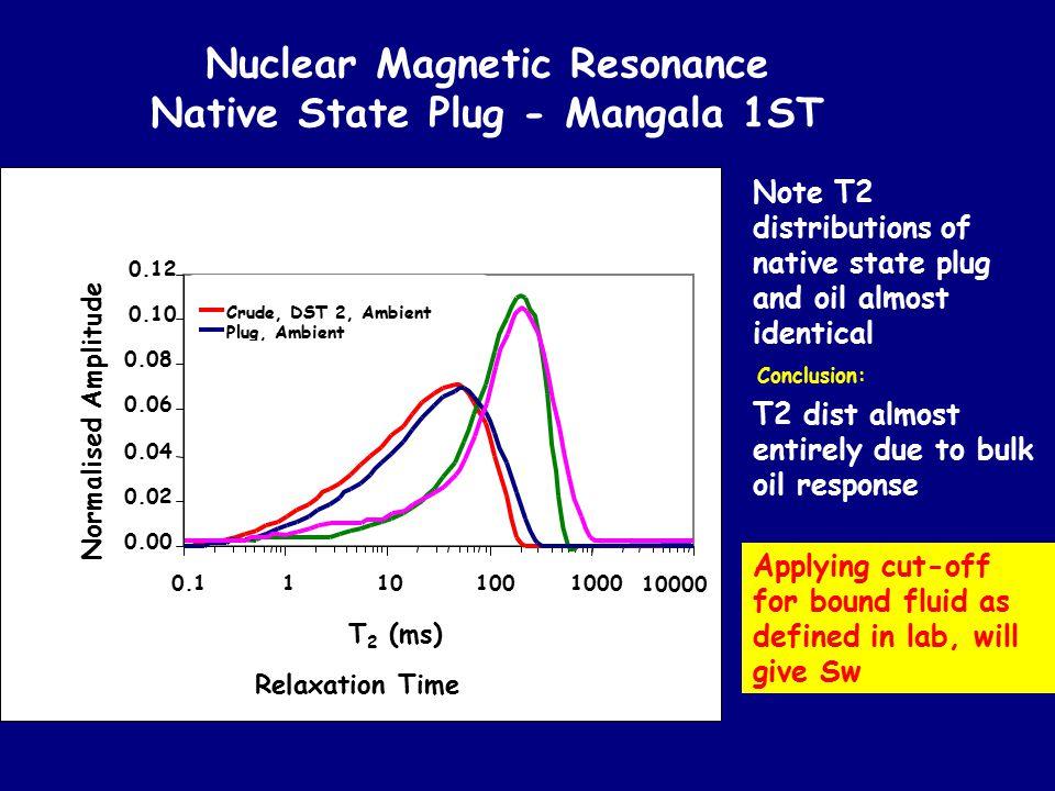 Nuclear Magnetic Resonance Native State Plug - Mangala 1ST