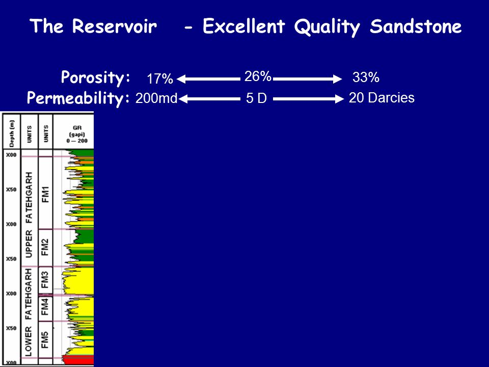 The Reservoir - Excellent Quality Sandstone Clastic Fluvial Reservoirs